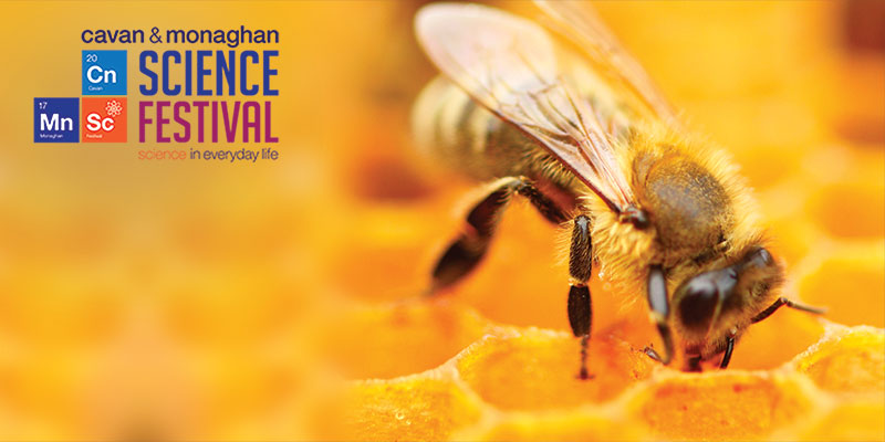 The Science of the Honey Bee & Why Keep Bees