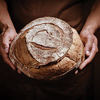 The Science behind Sourdough