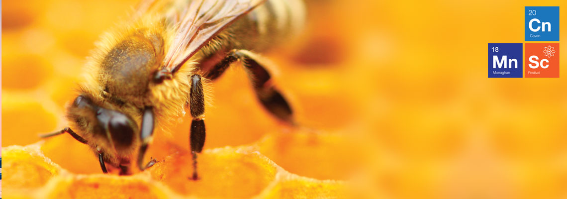 Science of Beekeeping, Thursday 15th Nov. 7pm, Bailieboro
